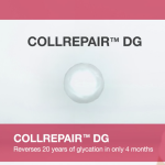 BASF Collrepair DG