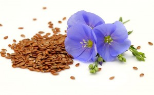 Flax seed is an excellent source of omega-3 ALA's.