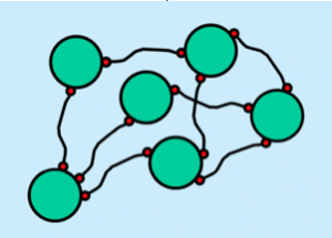 Figure 2: Physcial network preventing sedimentation. Click to view larger image.