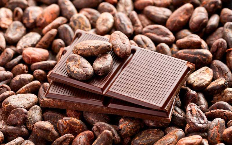 Cocoa Butter Substitutes in Chocolate
