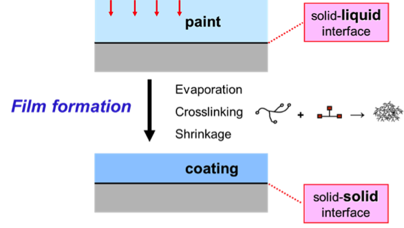 Film formation: a liquid paint transforms into a solid coating.