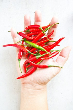 spicy02