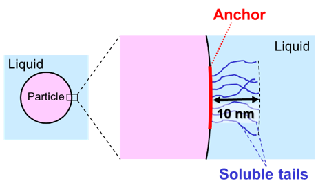 Soluble tails at the surface of a particle. Learn more about steric stabilization in the Prospector Knowledge Center.