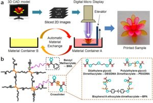 Figure of the process of fabricating a multi-material structure based on a photo-curable shape memory polymer network. Learn about 4D printing in the Prospector Knowledge Center.