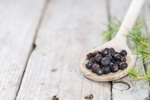 The use of botanicals opens the Gin spirit category to a wide field of ingredients in addition to juniper berries. Learn more from expert Martin Haug in the Knowledge Center.