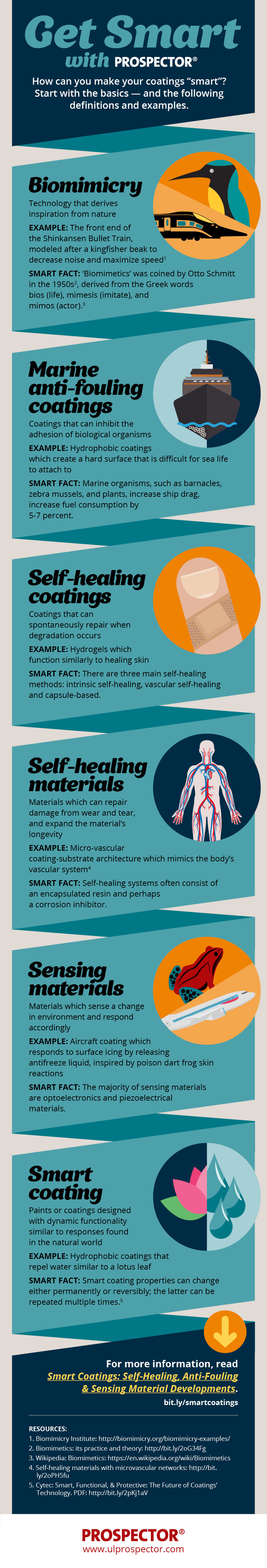 Smart Coatings glossary - this infographic explains some of the core concepts critical to the formulation of coatings that adjust and adapt to their environment. Learn more in the Prospector Knowledge Center.