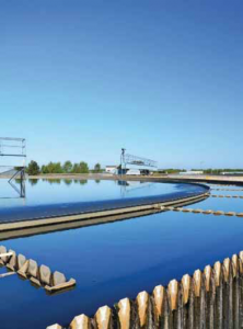 Find out how a waste treatment plant plays a role in green lubricants processes in the Prospector Knowledge Center.