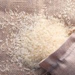 photo of a spilled bag of rice - learn more about rice protein